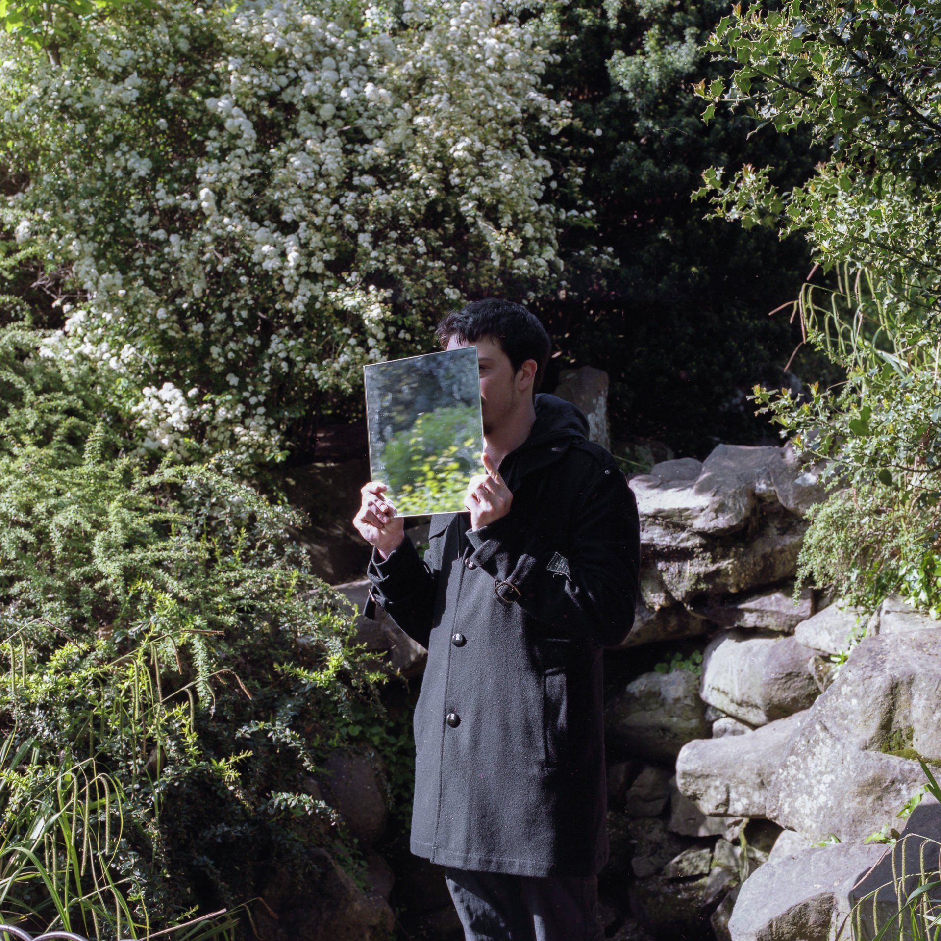 Edward W stood in the middle of a park with rocks and trees, holding a square mirror in front of his face that reflects the plant life around him